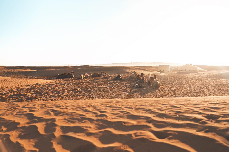 2_días_marrakech_zagora_maventur